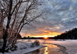 Winterarrangement